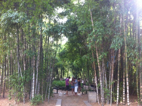 Barefoot Park. You start by taking your shoes off then meander through the bamboo forest.